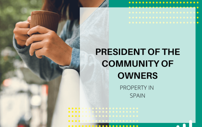President of the Community of Owners in Spain