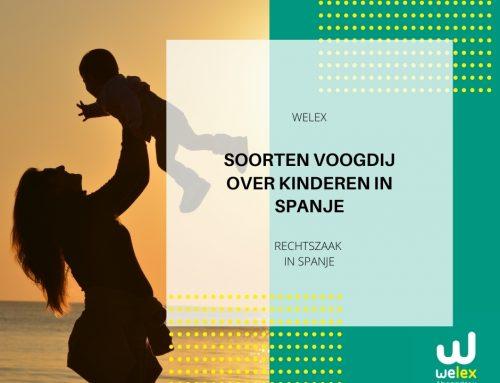 Soorten voogdij over kinderen in Spanje | WELEX