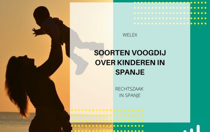 Soorten voogdij over kinderen in Spanje